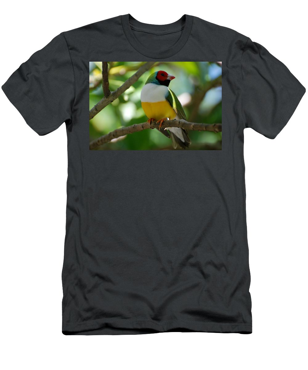 Lepidopterology Men's T-Shirt (Athletic Fit) featuring the photograph Birdie by Rob Hans