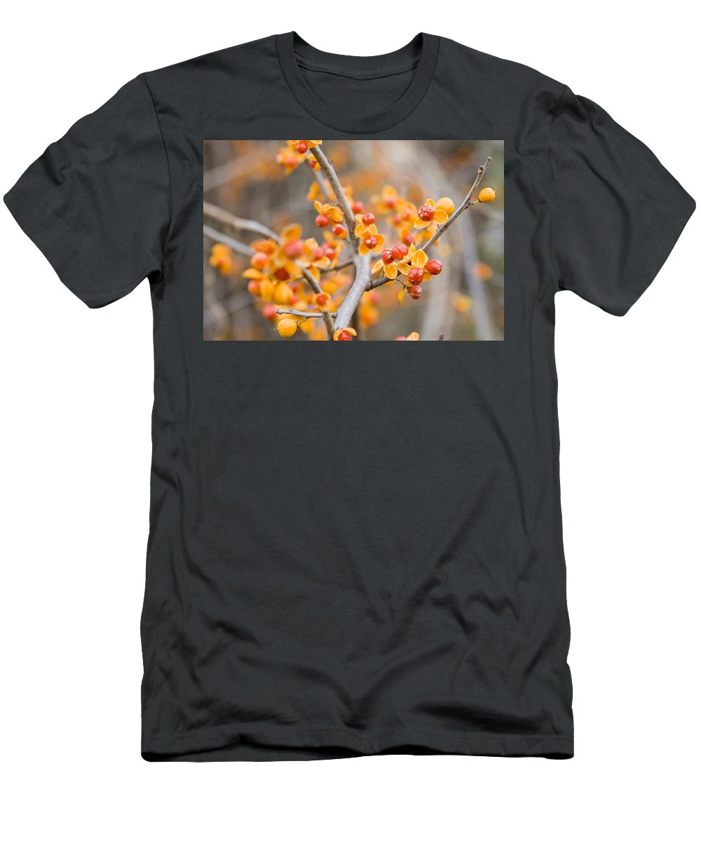 Bittersweet Men's T-Shirt (Athletic Fit) featuring the photograph Bittersweet by Alexey Stiop
