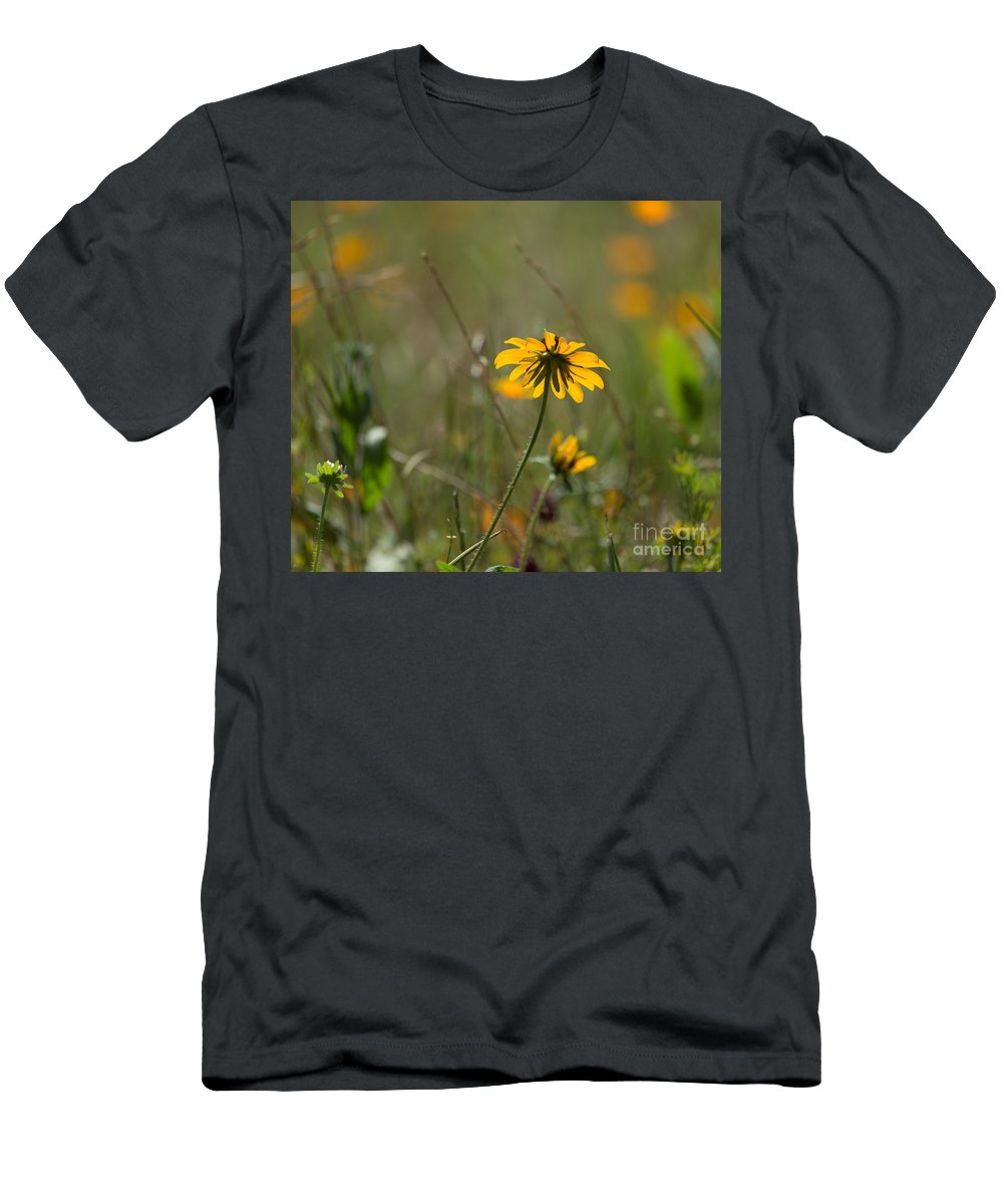 Black Eyed Susan Men's T-Shirt (Athletic Fit) featuring the photograph Black-eyed Susan by Louise Heusinkveld