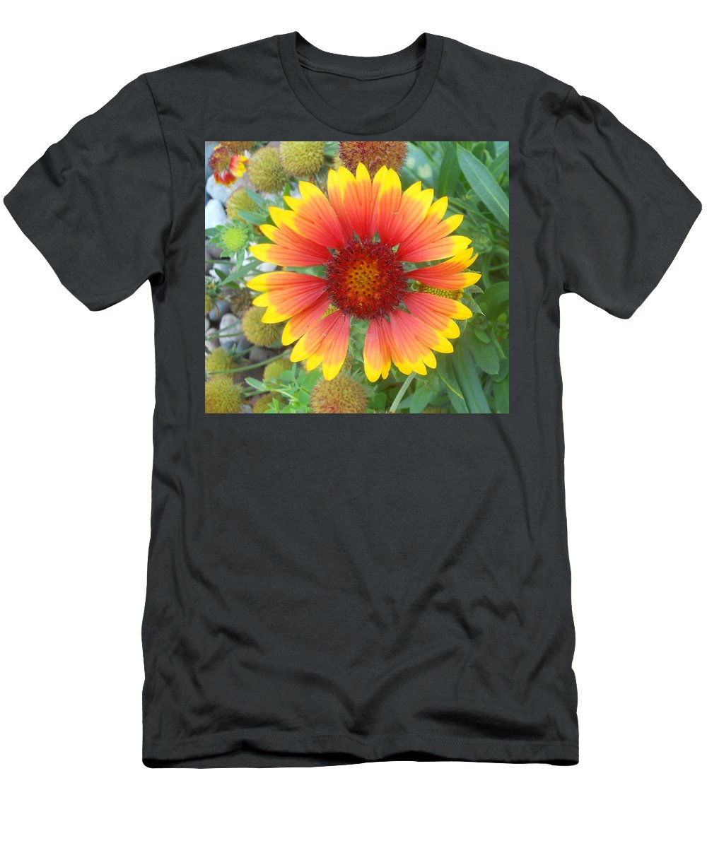 Flowers Men's T-Shirt (Athletic Fit) featuring the photograph Blanket Flower by Coleen Harty