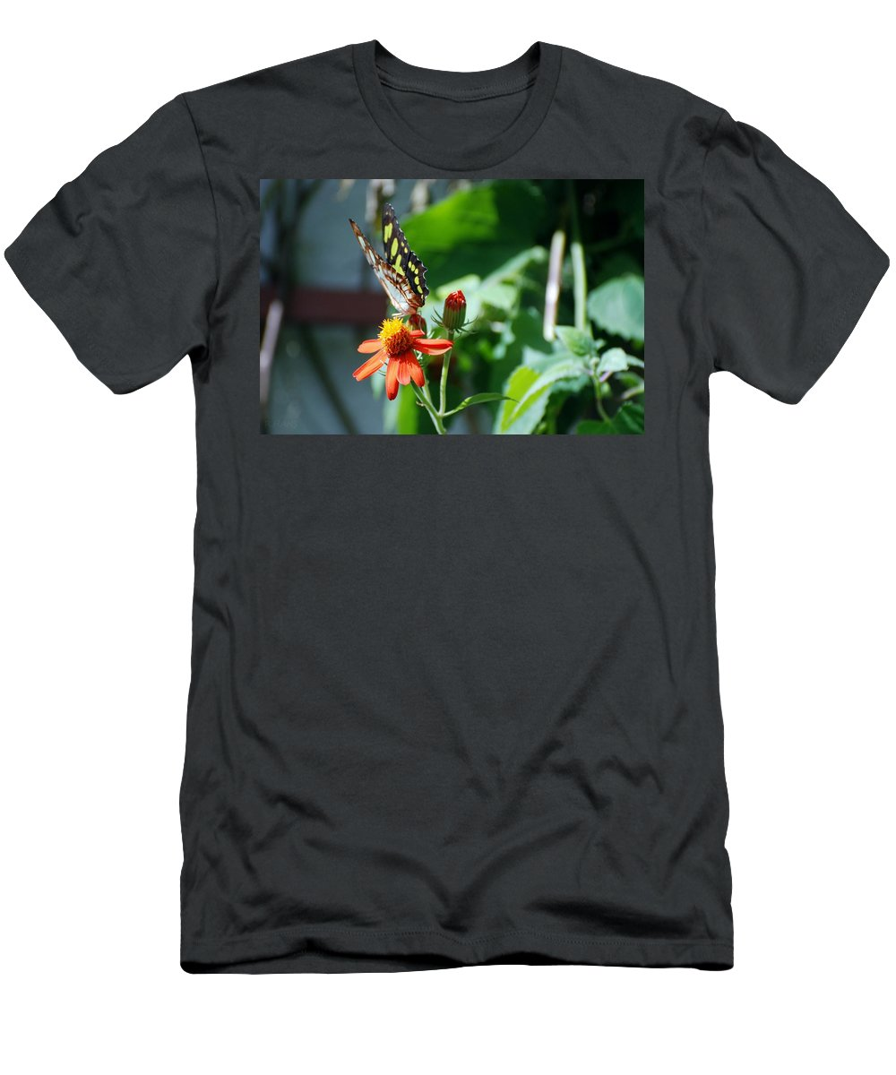 Lepidopterology Men's T-Shirt (Athletic Fit) featuring the photograph Blooms And Butterfly4 by Rob Hans