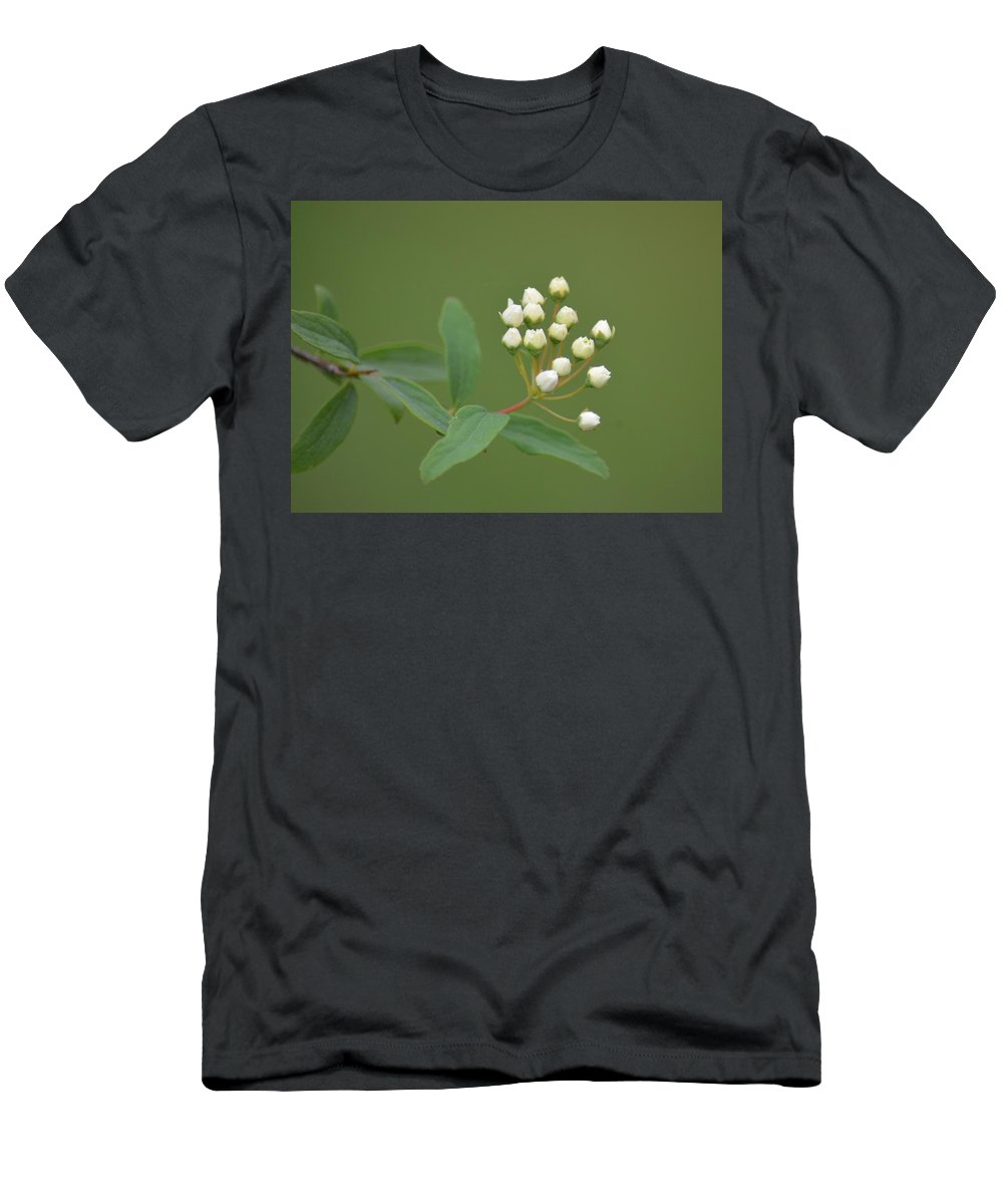 Blossoming Spirea Buds Men's T-Shirt (Athletic Fit) featuring the photograph Blossoming Spirea Buds by Maria Urso