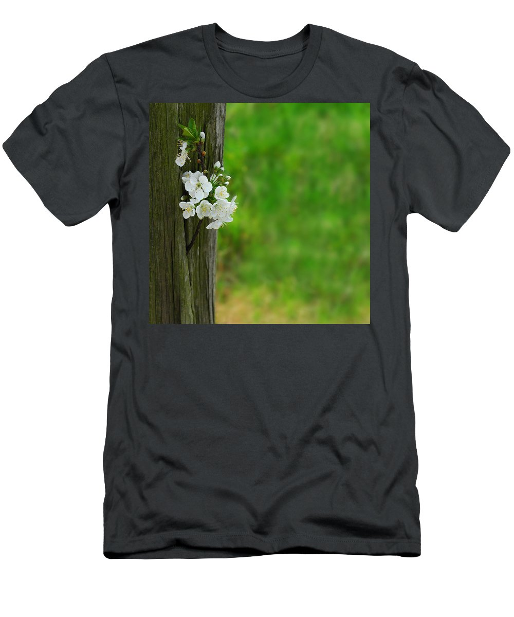 Garden Men's T-Shirt (Athletic Fit) featuring the photograph Blossoms by TouTouke A Y