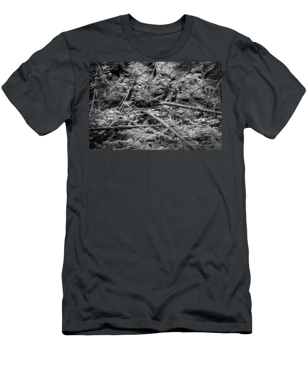 Glacier National Park Men's T-Shirt (Athletic Fit) featuring the photograph Blow Down Glacier National Park Bw by Rich Franco