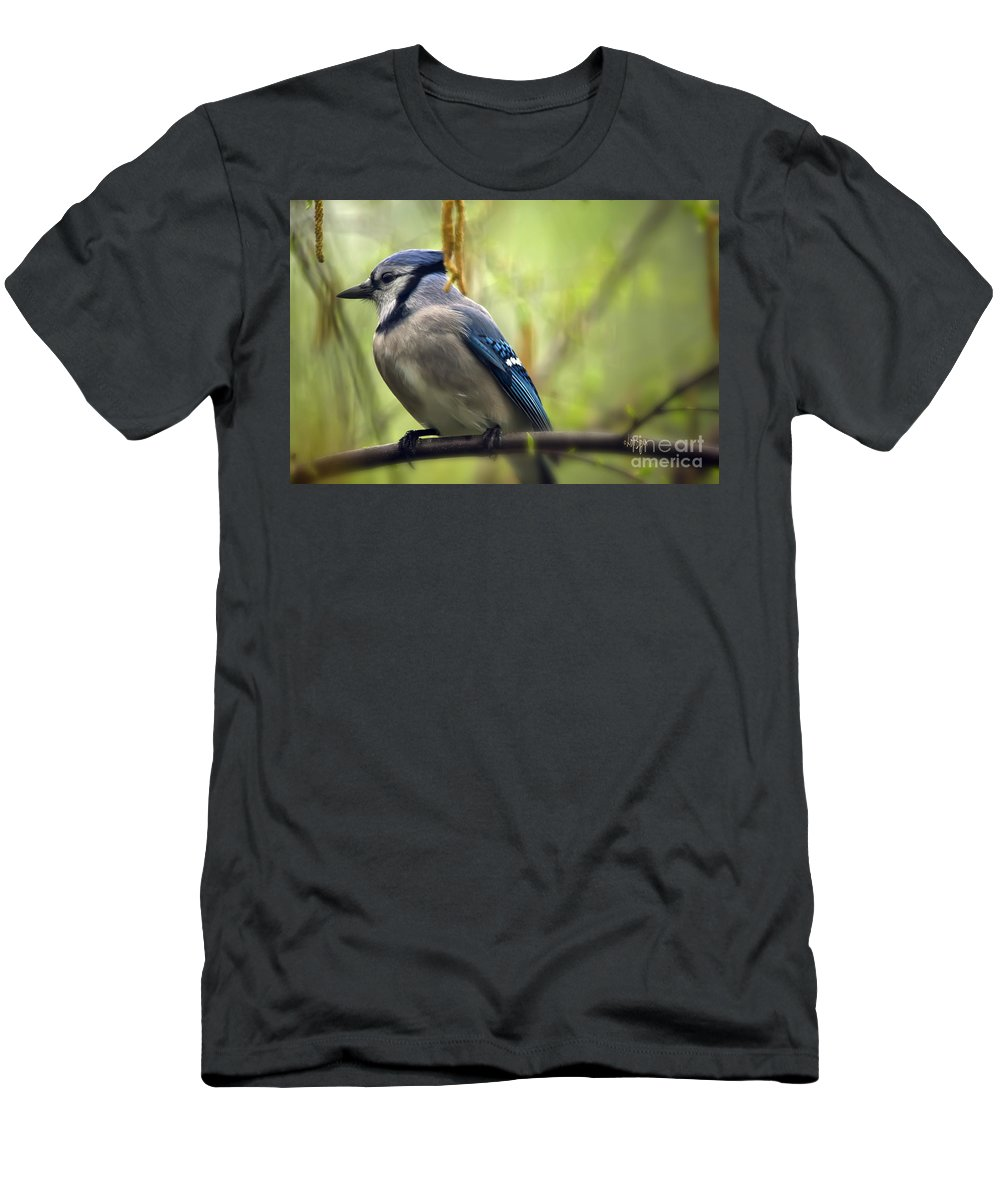 Bird Men's T-Shirt (Athletic Fit) featuring the photograph Blue Jay On A Misty Spring Day by Lois Bryan