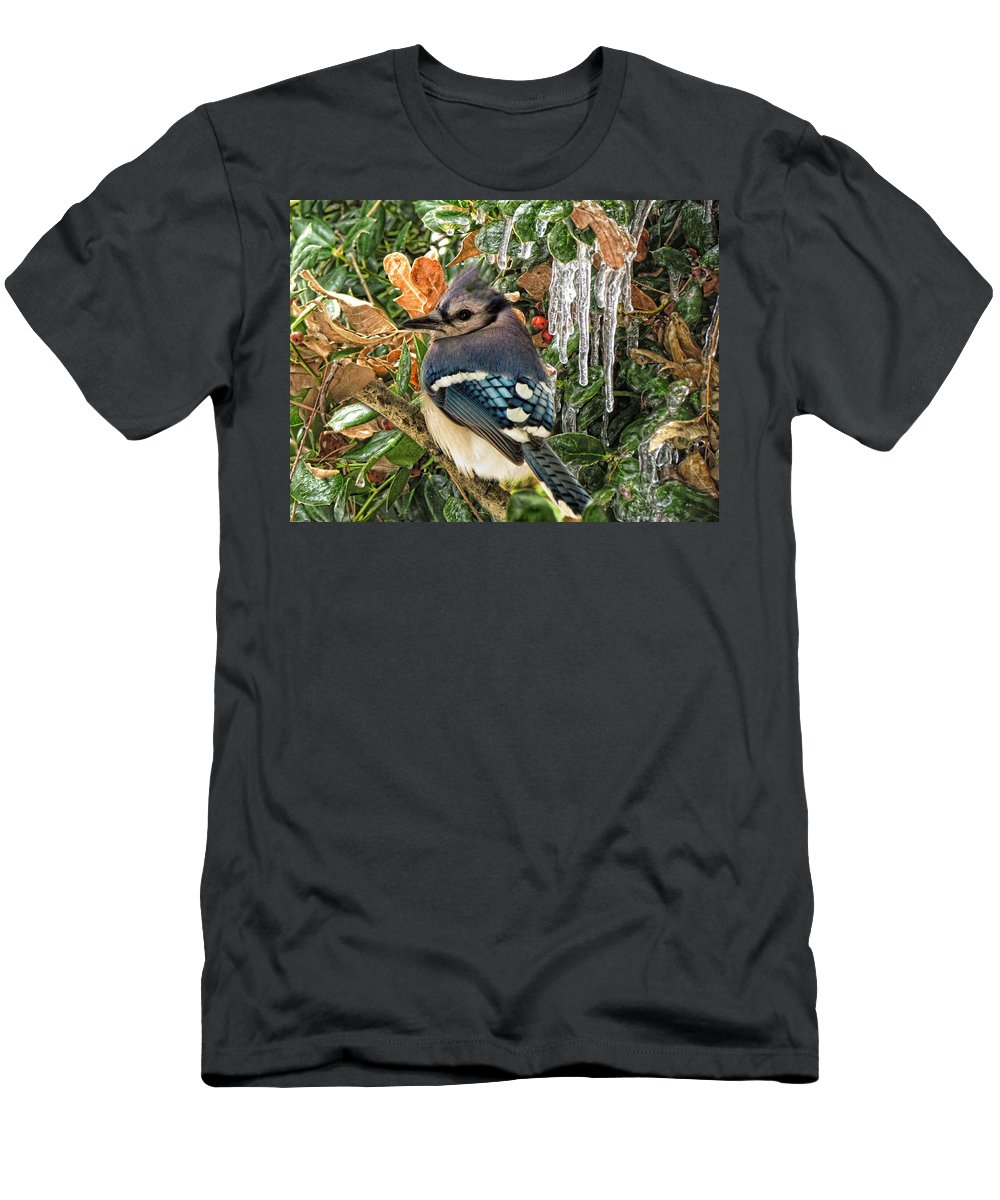 Bluejay Men's T-Shirt (Athletic Fit) featuring the photograph Bluejay And Ice by Shannon Story