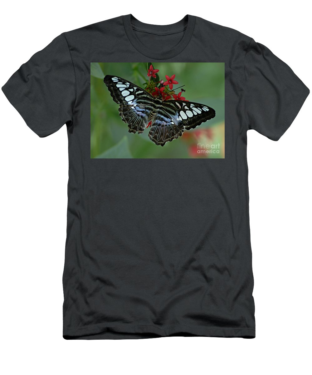 Butterfly Men's T-Shirt (Athletic Fit) featuring the photograph Bold And Beautiful by Bob Christopher