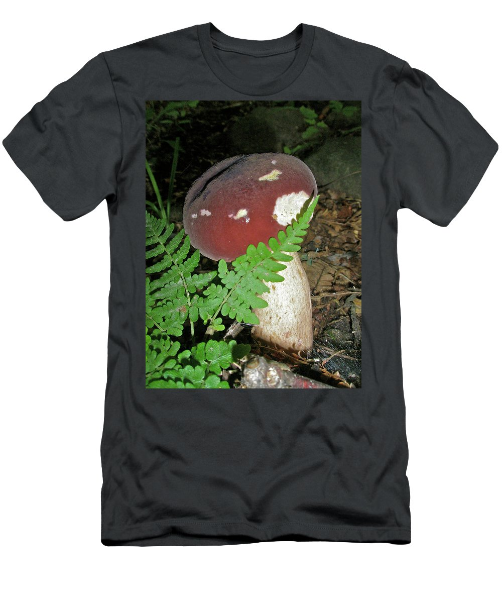 Mushroom Men's T-Shirt (Athletic Fit) featuring the photograph Bolete Mushroom And Fern by Mother Nature