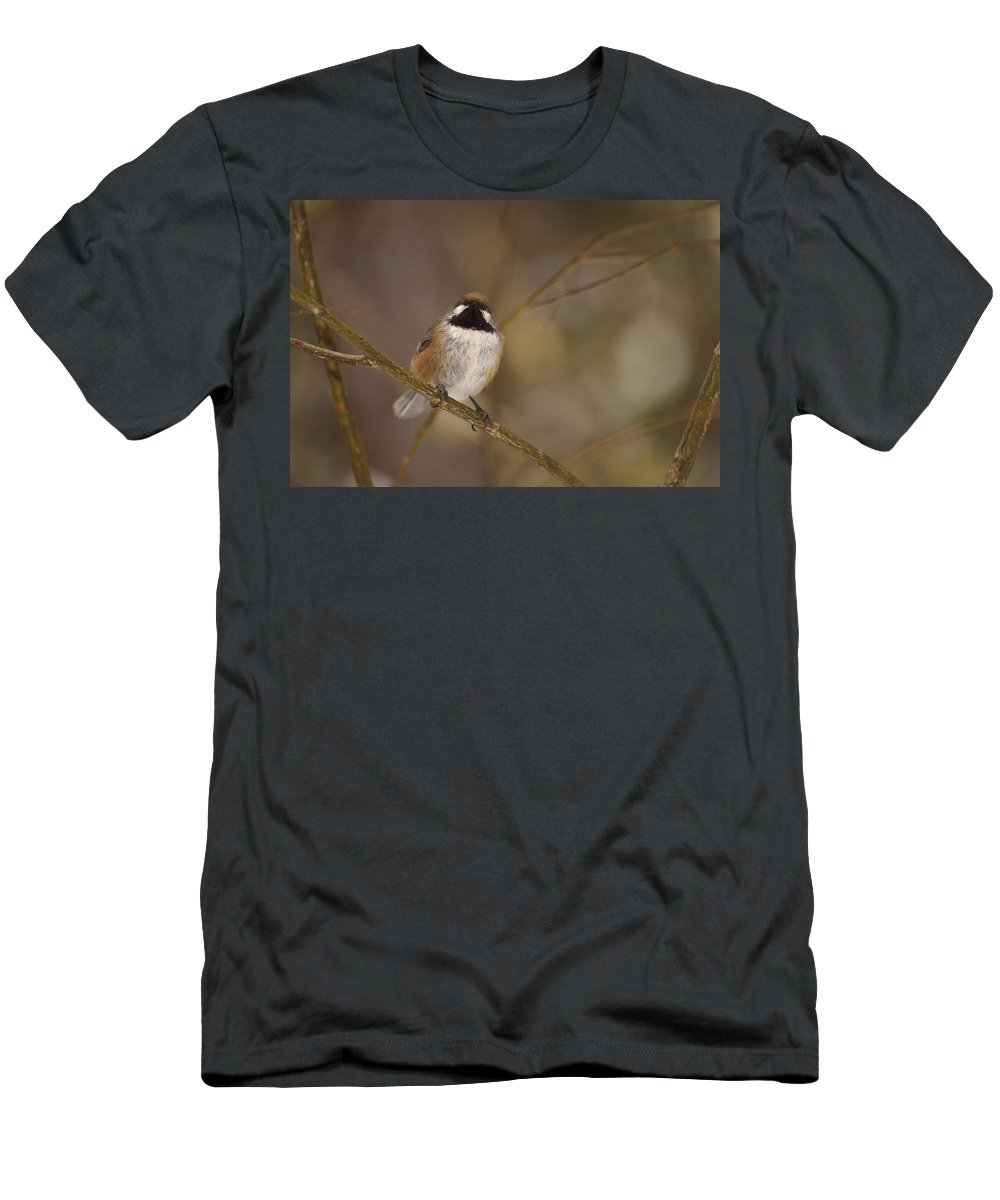 Boreal Chickadee Men's T-Shirt (Athletic Fit) featuring the photograph Bonding Boreal by Joshua McCullough