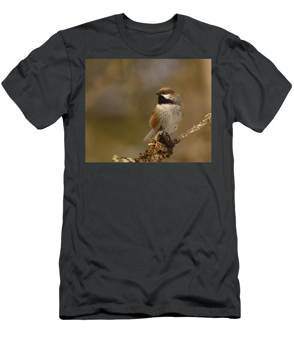 Boreal Chickadee Men's T-Shirt (Athletic Fit) featuring the photograph Boreal Magic by Joshua McCullough