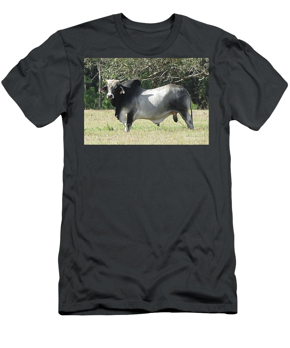 This Brahama Bull Has An Intimidating Look On His Face. They Are Used For Breeding Stock And For Bull Fighting. Being Friendly Is Not One Of Their Best Traits And They Are Dangerous Men's T-Shirt (Athletic Fit) featuring the photograph Brahama Bull by Fortunate Findings Shirley Dickerson