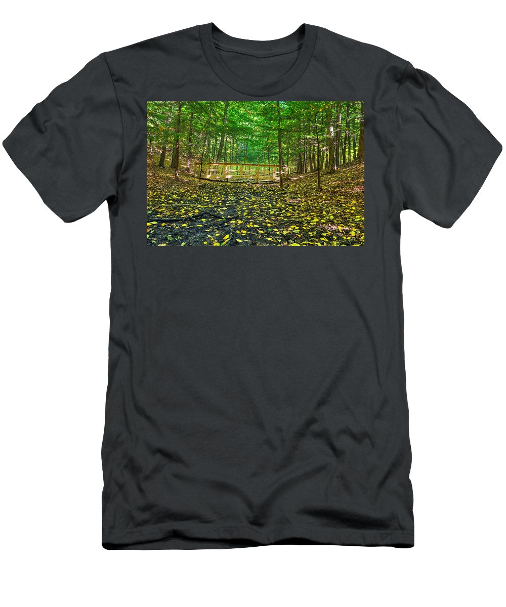 Gosnell Big Woods Men's T-Shirt (Athletic Fit) featuring the photograph Bridge In Gosnell Big Woods by Tim Buisman