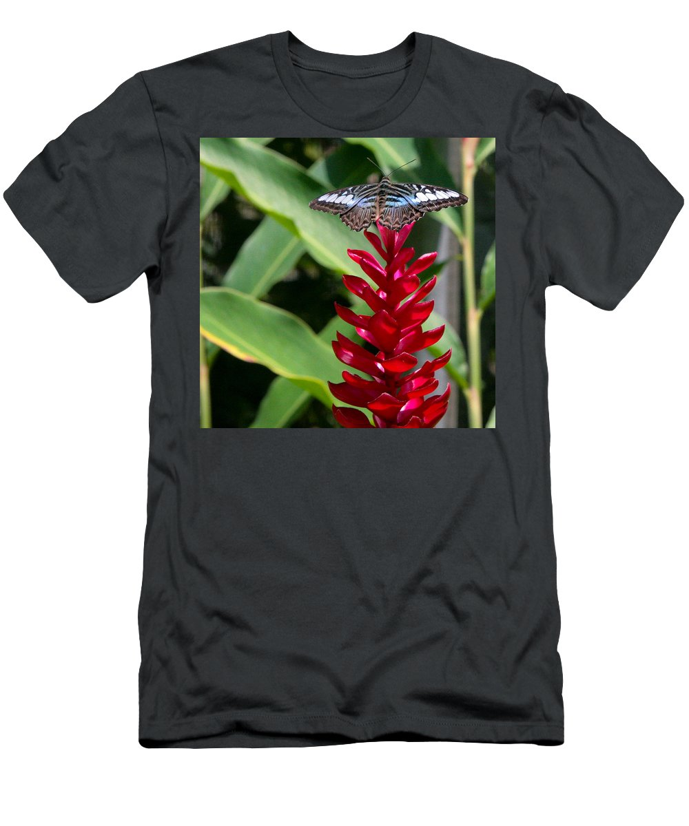 Butterfly Men's T-Shirt (Athletic Fit) featuring the photograph Brilliant Butterfly by Natalie Rotman Cote