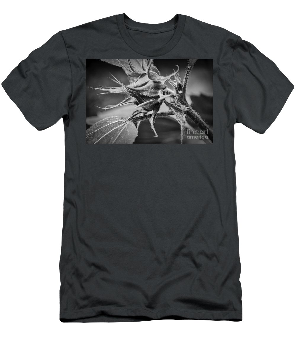 Beautiful Men's T-Shirt (Athletic Fit) featuring the photograph Budding Sunflower In Black And White by Mary Carol Story