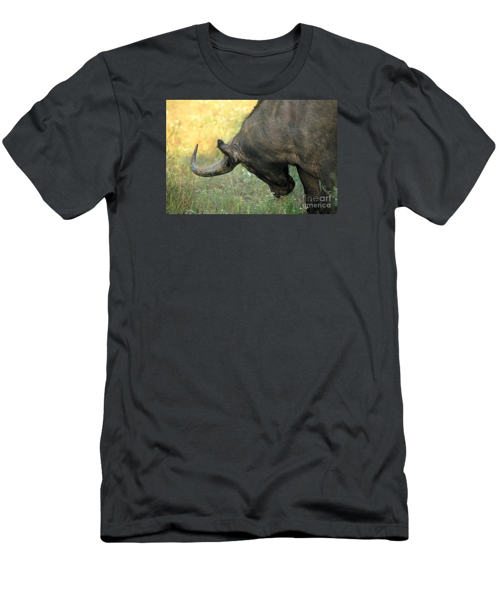 Africa Men's T-Shirt (Athletic Fit) featuring the photograph Buffalo by Deborah Benbrook