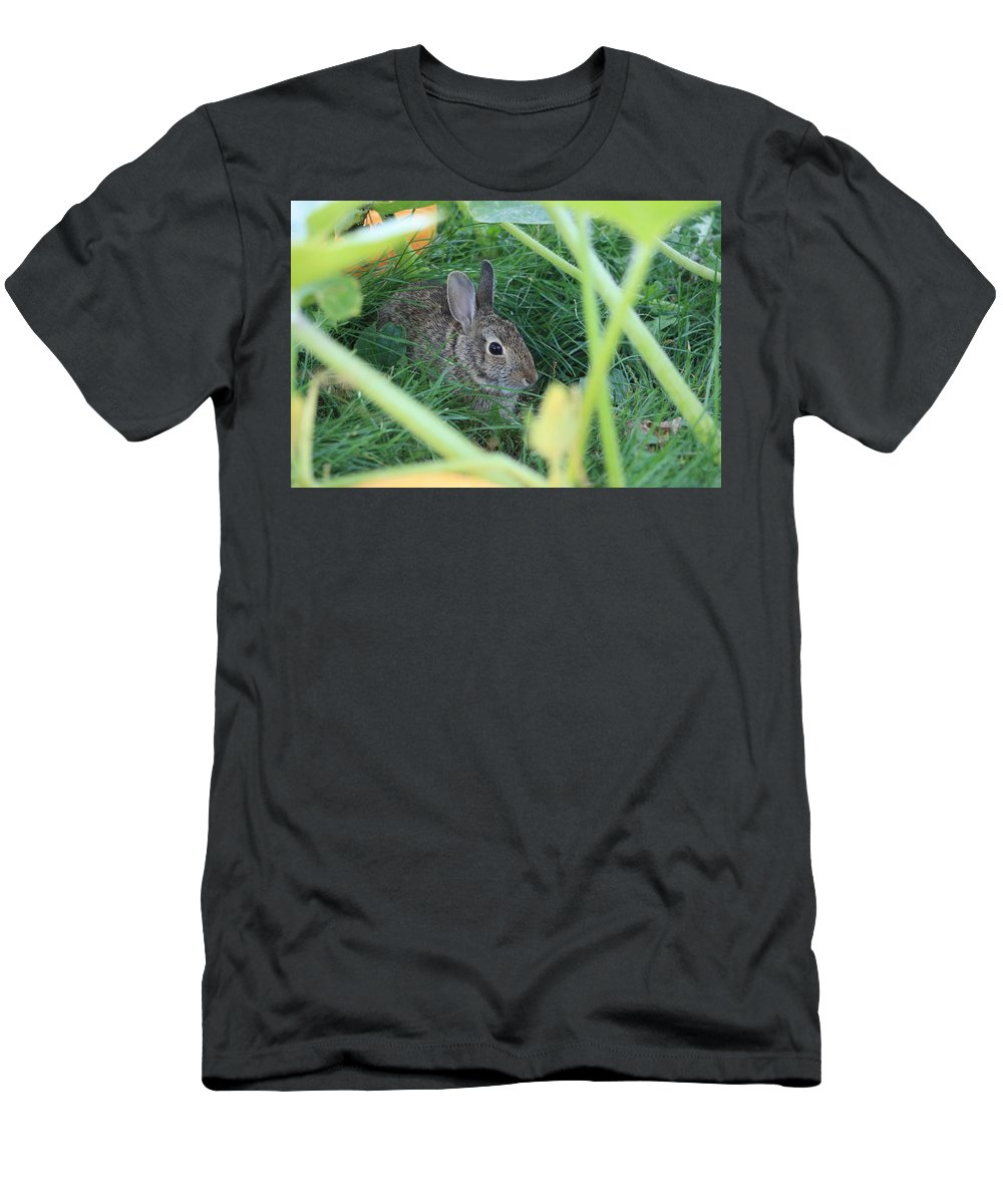 Rabbit Men's T-Shirt (Athletic Fit) featuring the photograph Bunny Rabbit by Amanda Stadther