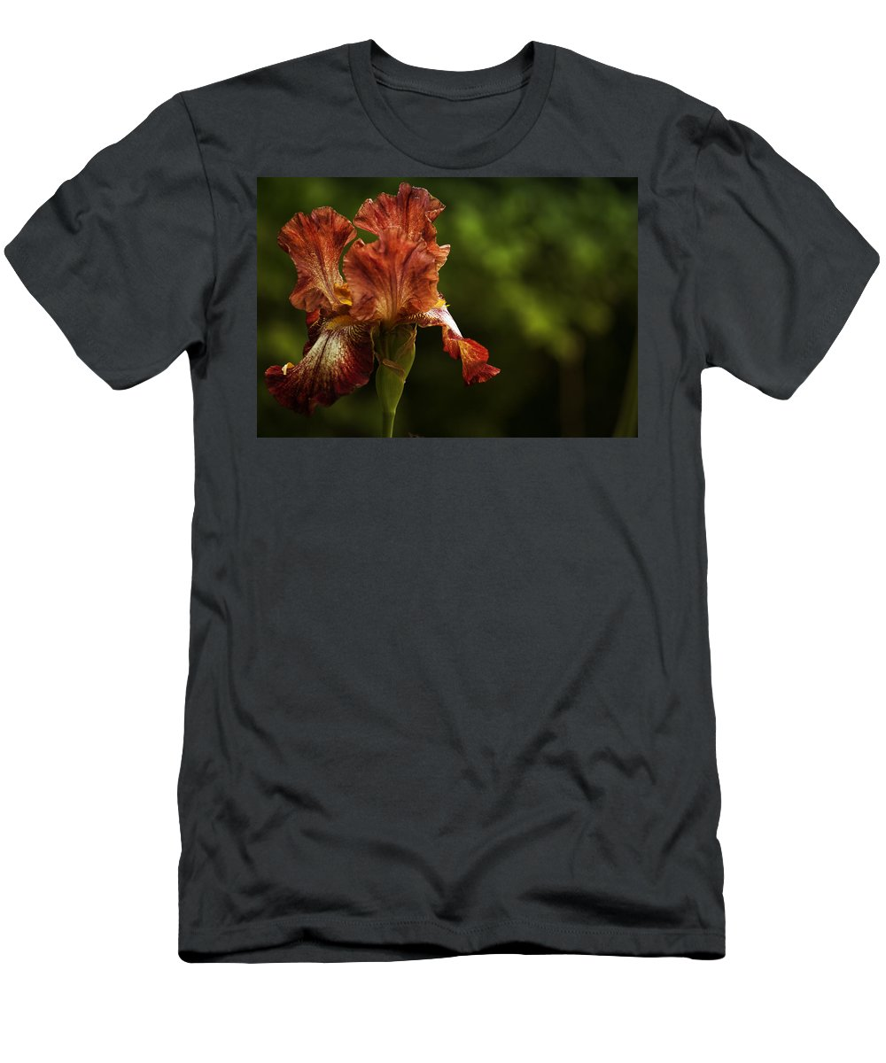 Iris Men's T-Shirt (Athletic Fit) featuring the photograph Burnt Orange Iris by Belinda Greb
