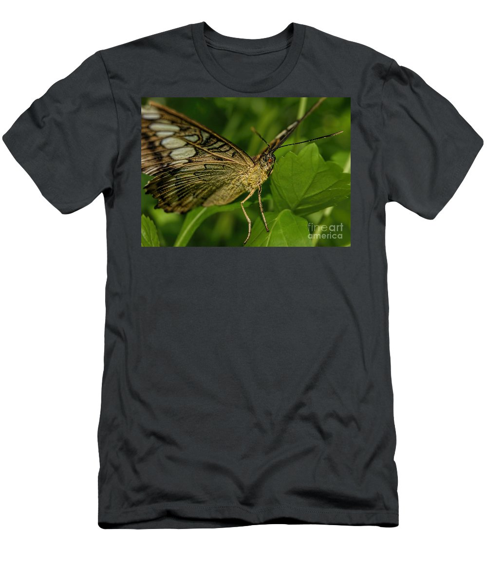 Butterfly Men's T-Shirt (Athletic Fit) featuring the photograph Butterfly 2 by Olga Hamilton