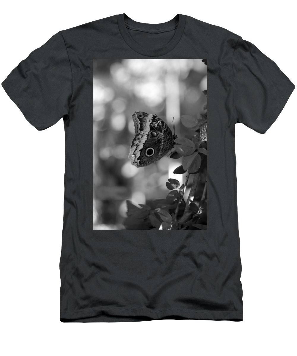 Lepidopterology Men's T-Shirt (Athletic Fit) featuring the photograph Butterfly 3 by Rob Hans
