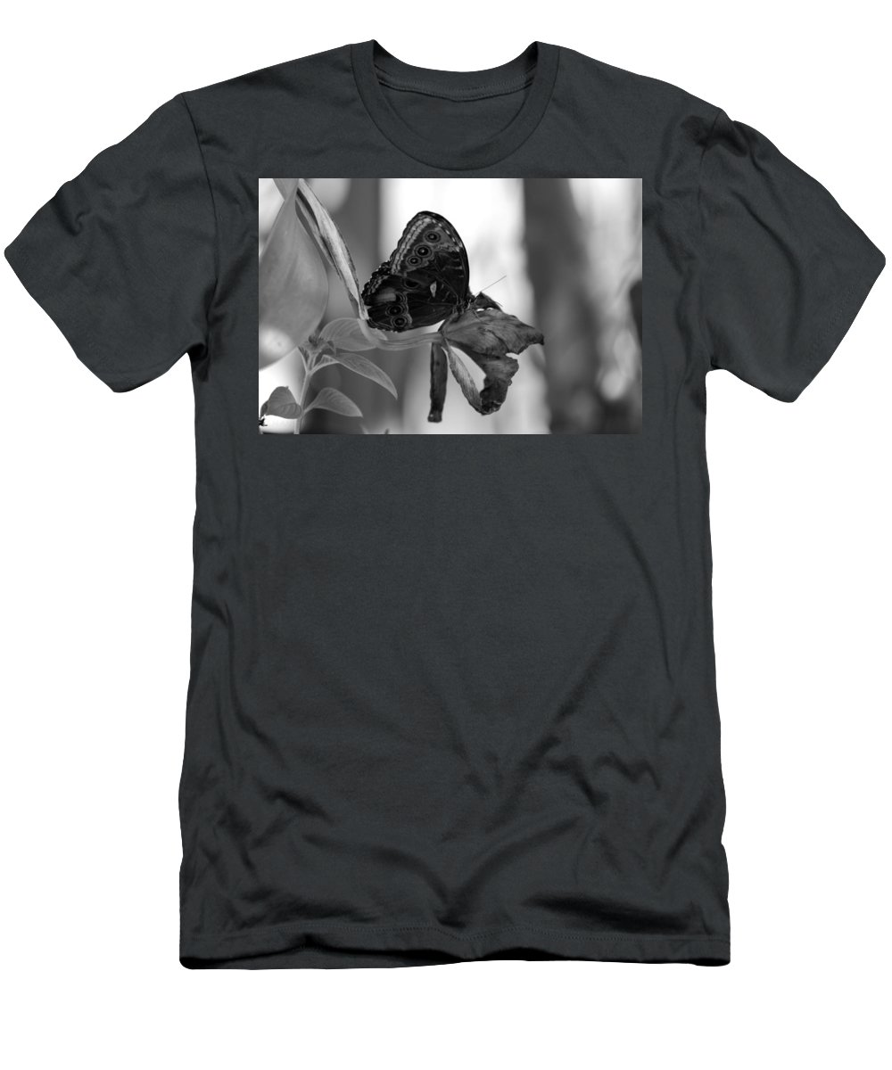 Lepidopterology Men's T-Shirt (Athletic Fit) featuring the photograph Butterfly 4 by Rob Hans