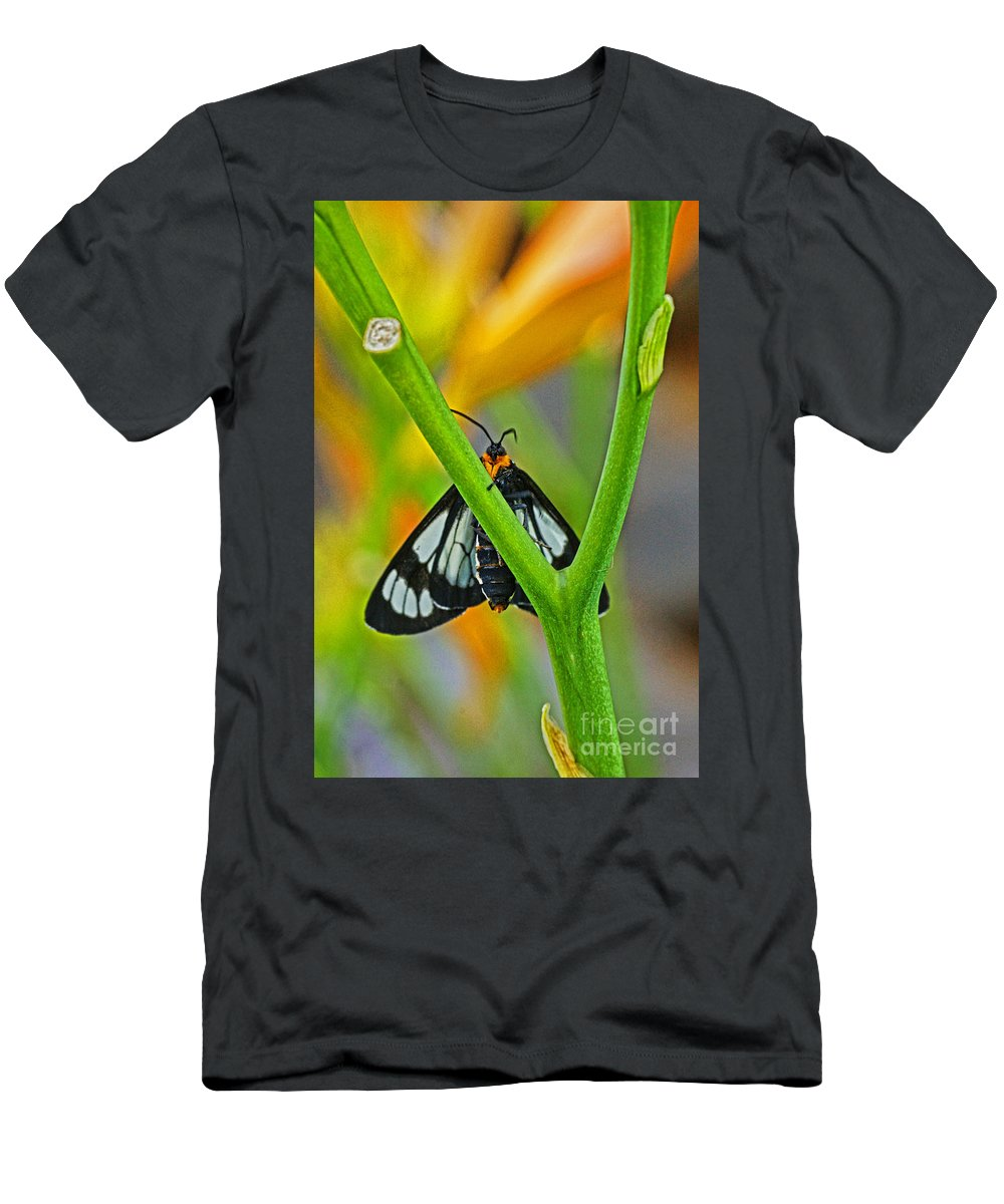 Butterflies Men's T-Shirt (Athletic Fit) featuring the photograph Butterfly An3597-13 by Randy Harris