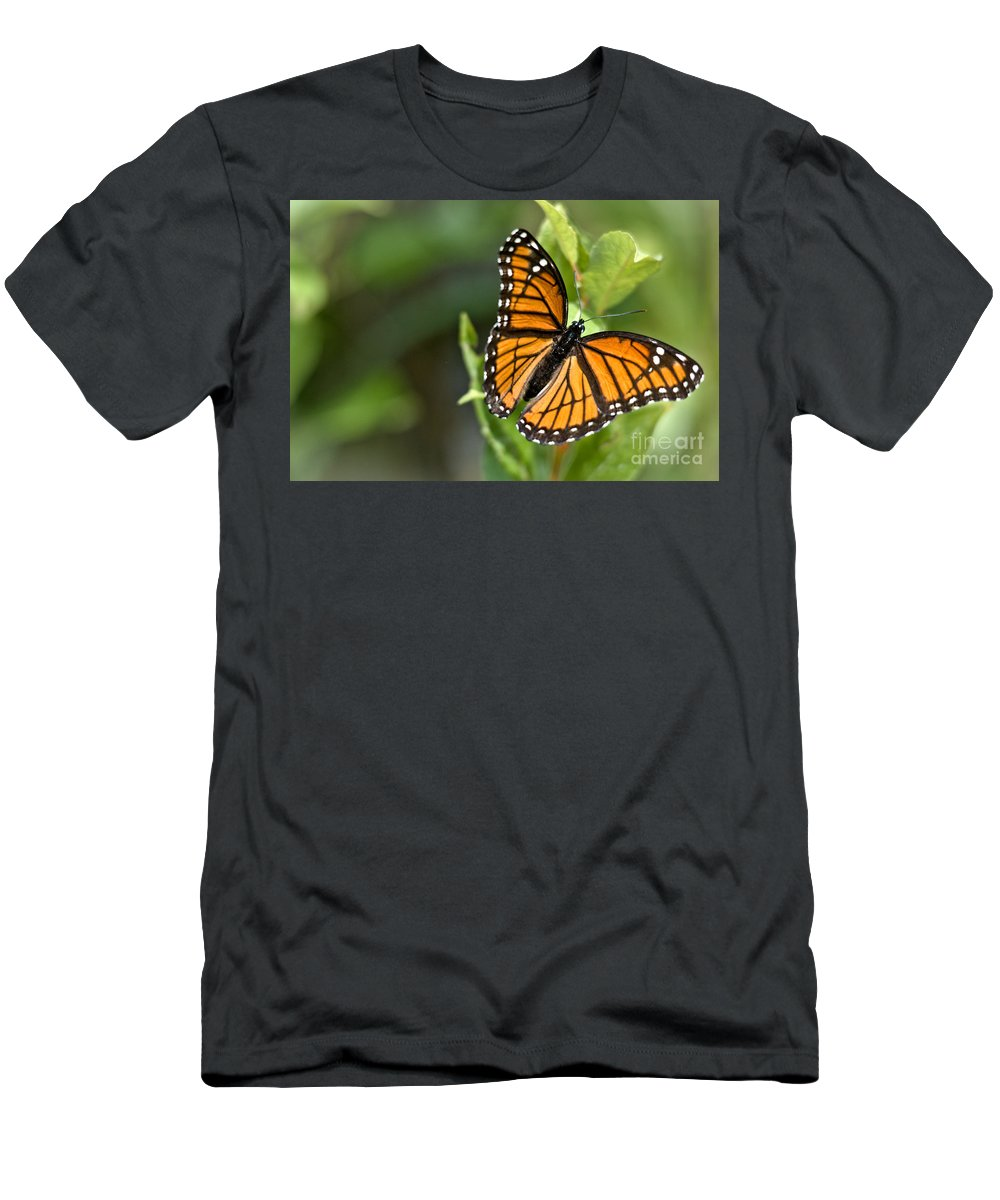 Monarch Men's T-Shirt (Athletic Fit) featuring the photograph Butterfly Scene by Cheryl Baxter