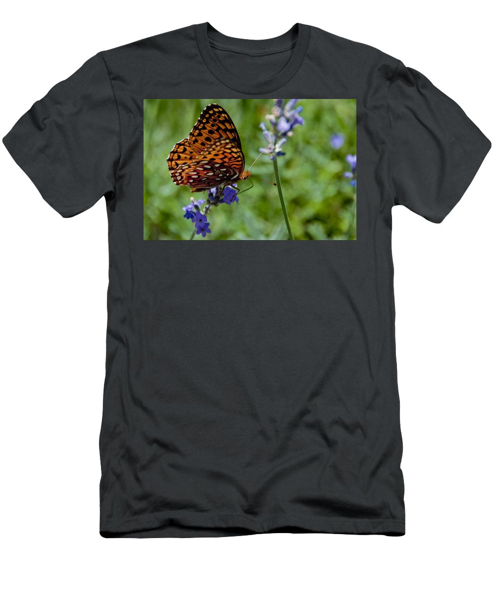 Butterfly Men's T-Shirt (Athletic Fit) featuring the photograph Butterfly Visit by Ron White