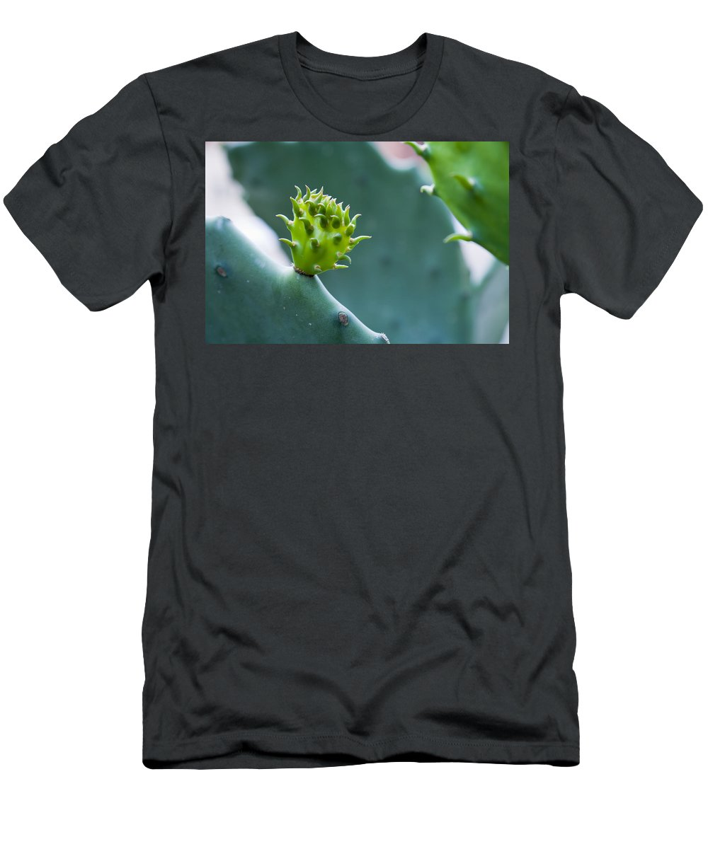 Cactus Men's T-Shirt (Athletic Fit) featuring the photograph Cactus by Alexey Stiop