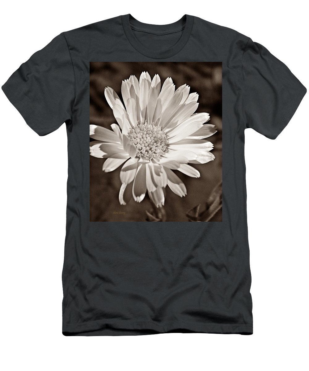 Calendula Men's T-Shirt (Athletic Fit) featuring the photograph Calendula by Chris Berry