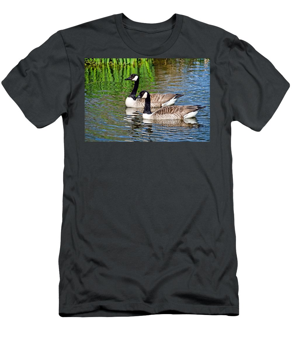 Mangerton-mill Men's T-Shirt (Athletic Fit) featuring the photograph Canada Geese by Susie Peek