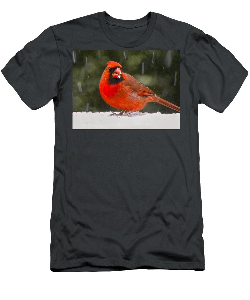 Northern Cardinal Men's T-Shirt (Athletic Fit) featuring the photograph Cardinal In The Snowstorm by Sandi OReilly