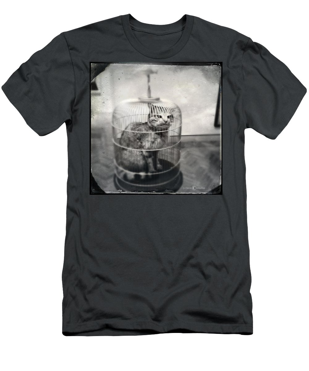 Vintage Look Men's T-Shirt (Athletic Fit) featuring the photograph Cat In Cage by Tim Nyberg