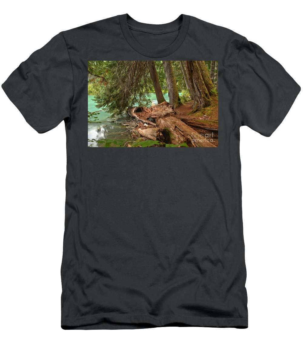 Cheakamus Lake Men's T-Shirt (Athletic Fit) featuring the photograph Cheakamus Lake Rainforest - British Columbia by Adam Jewell
