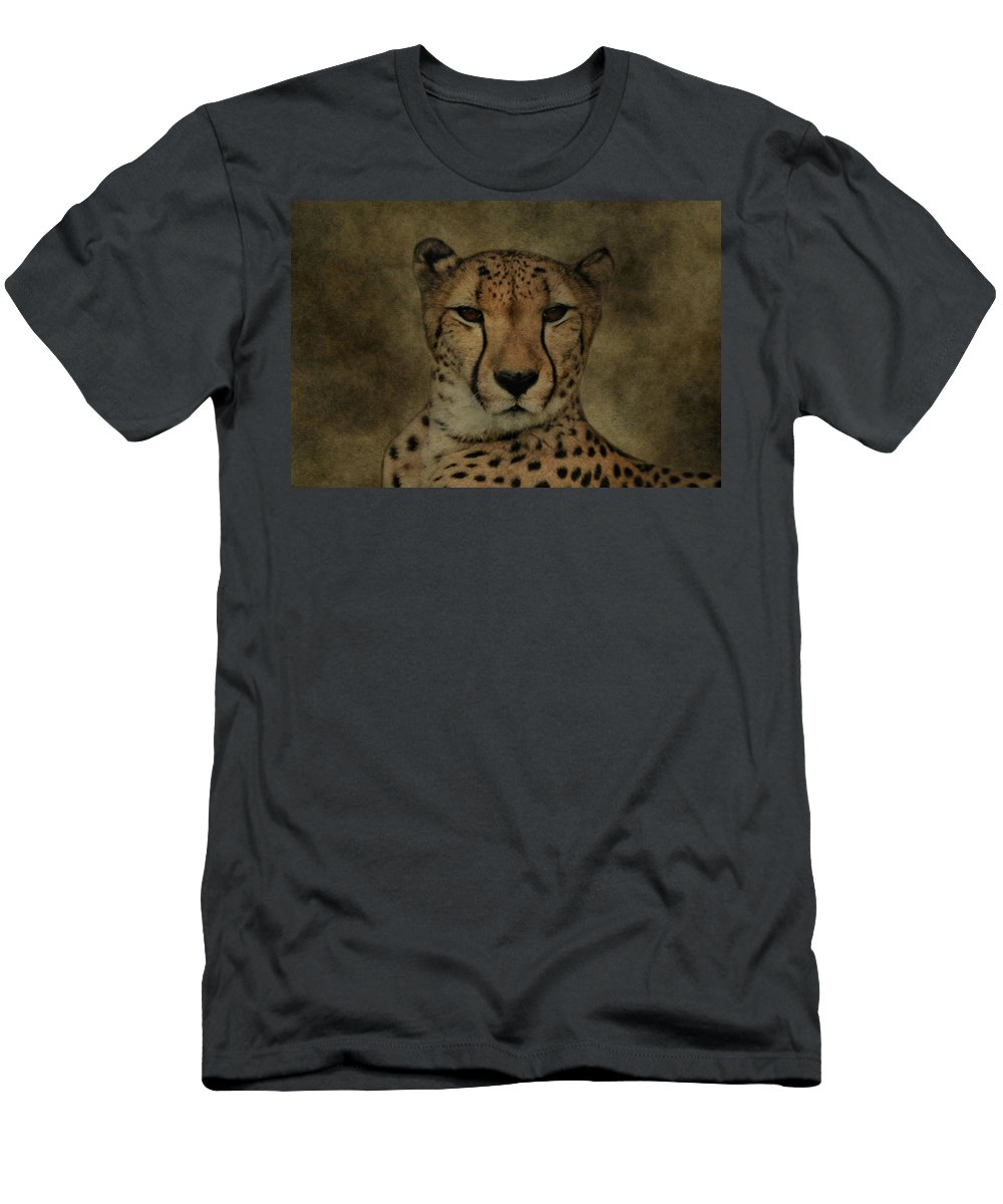 Cheetah Portrait Men's T-Shirt (Athletic Fit) featuring the photograph Cheetah Face by Dan Sproul