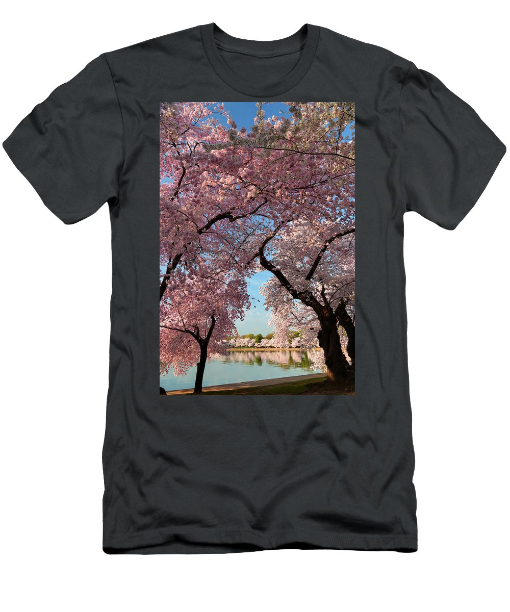 Architectural Men's T-Shirt (Athletic Fit) featuring the photograph Cherry Blossoms 2013 - 024 by Metro DC Photography