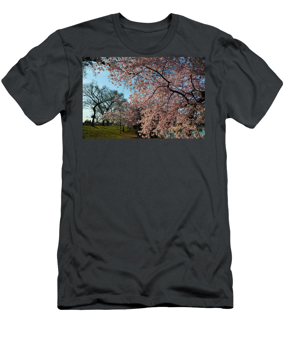 Architectural Men's T-Shirt (Athletic Fit) featuring the photograph Cherry Blossoms 2013 - 038 by Metro DC Photography