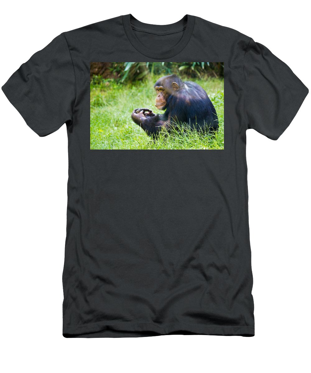 Color Men's T-Shirt (Athletic Fit) featuring the photograph Chimpanzee Looking by Jonny D