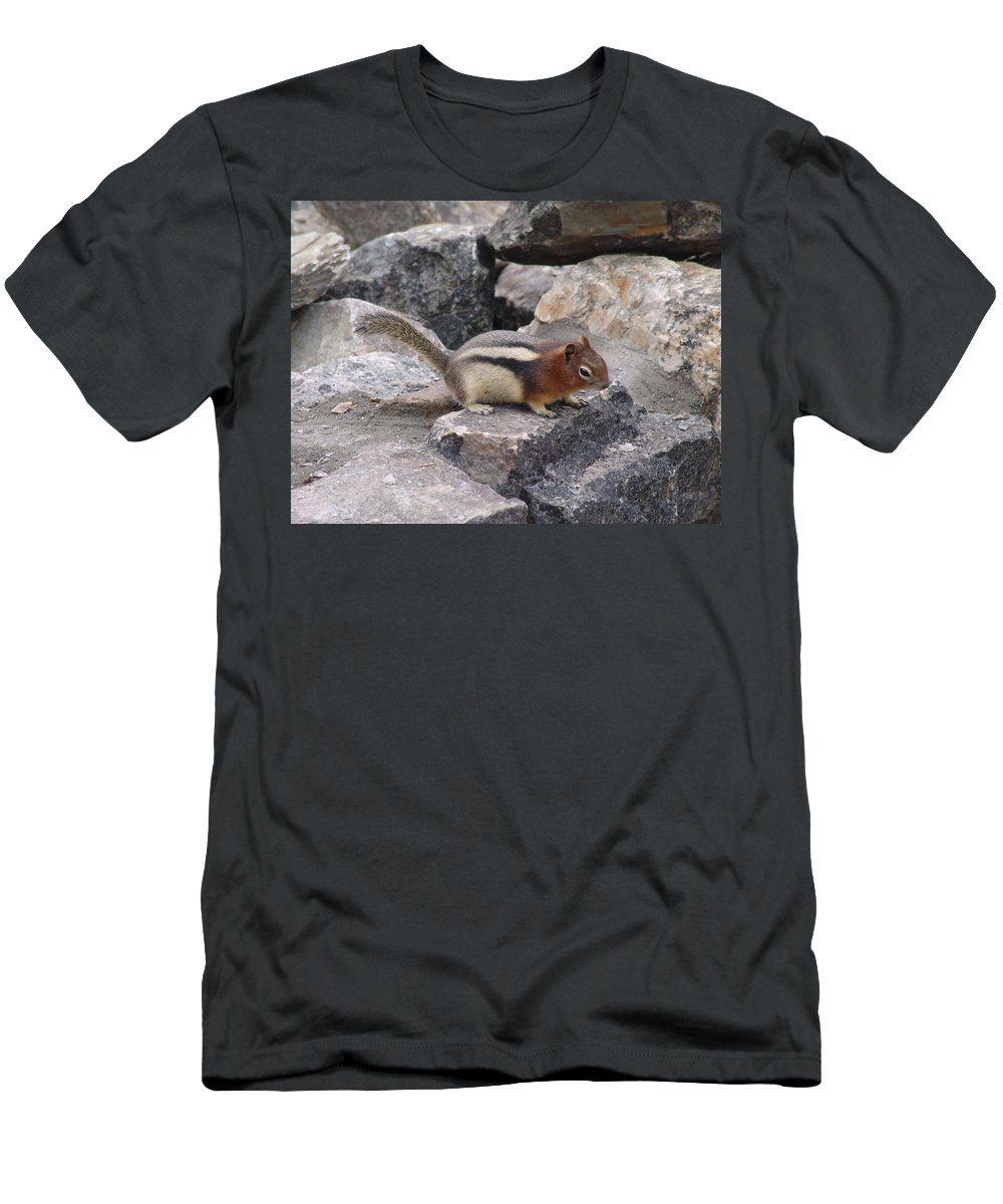 Chipmunk Men's T-Shirt (Athletic Fit) featuring the photograph Chipmunk Tones by Ian Mcadie