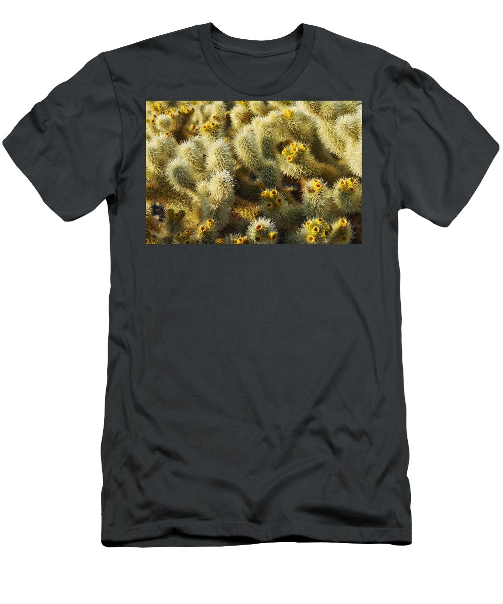 Joshua Tree National Park Men's T-Shirt (Athletic Fit) featuring the photograph Cholla Cactus Garden Mirage by Kyle Hanson