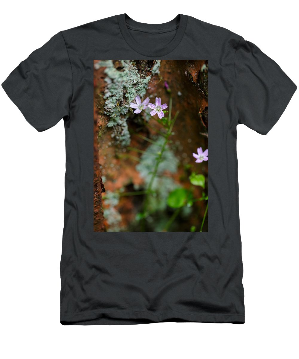 Rust Men's T-Shirt (Athletic Fit) featuring the photograph Claytonia And Rust by Rick Berk