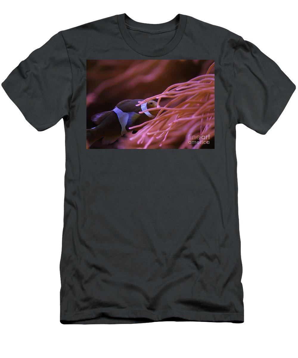 Clown Fish Men's T-Shirt (Athletic Fit) featuring the photograph Clown Fish In Amoeba by Tonya Hance
