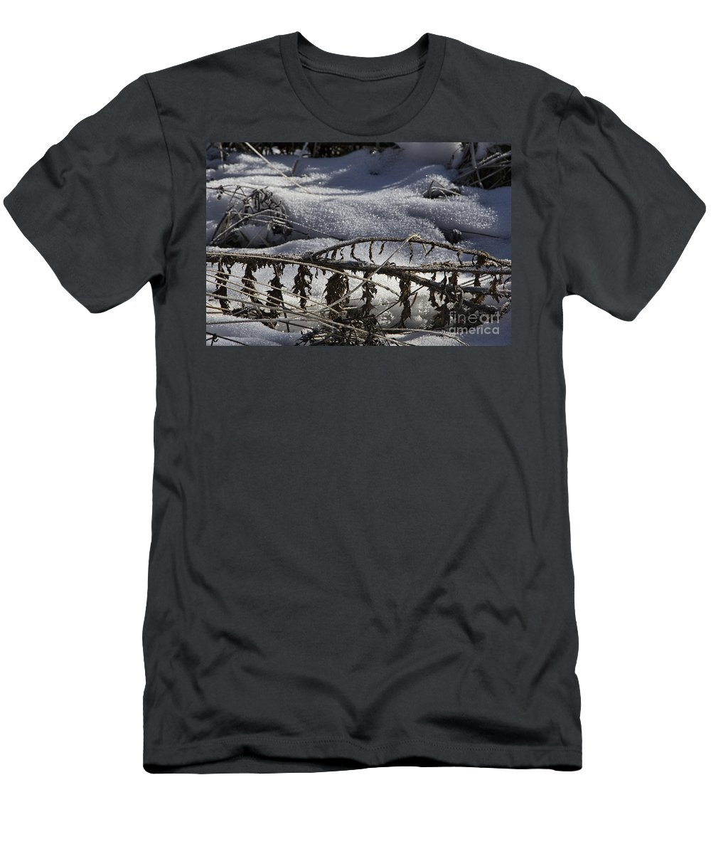 Mountain Men's T-Shirt (Athletic Fit) featuring the photograph Cold Death by Douglas Barnard