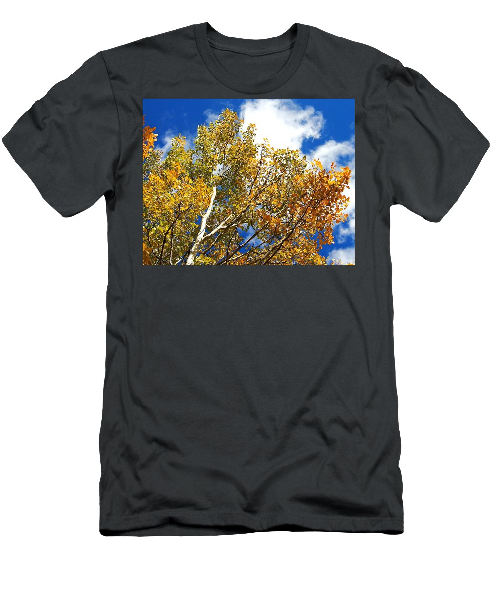 Aspen Men's T-Shirt (Athletic Fit) featuring the photograph Colorado Aspens And Blue Skies by Amy McDaniel