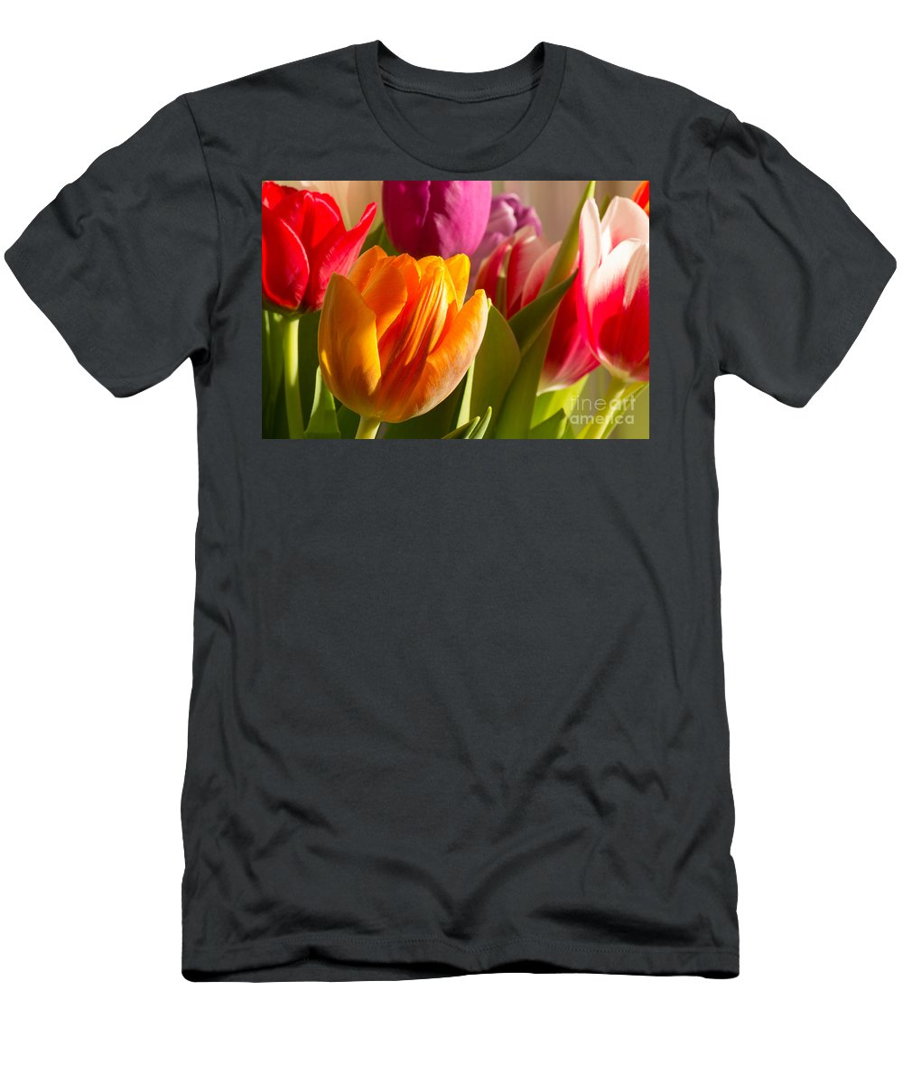 Tulips Men's T-Shirt (Athletic Fit) featuring the photograph Colourful Tulips In Sunlight by Kerstin Ivarsson