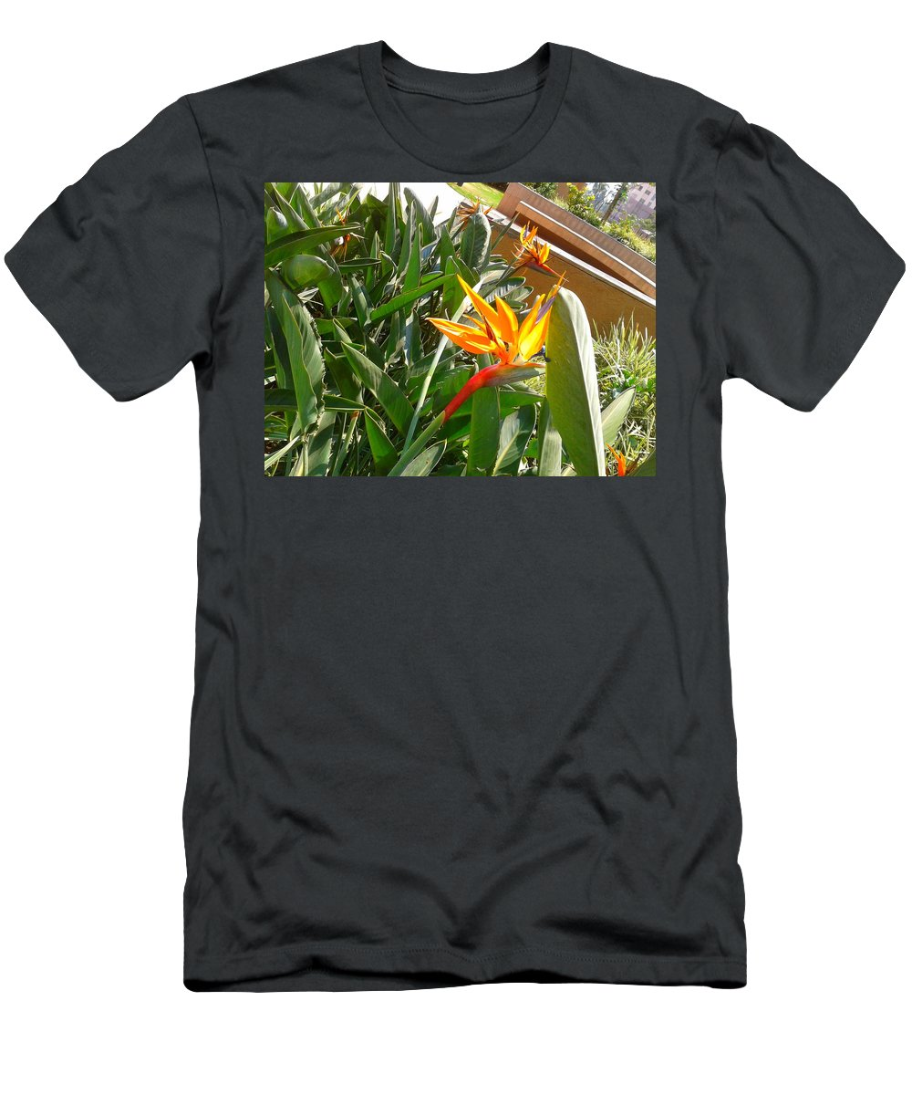 Flower Men's T-Shirt (Athletic Fit) featuring the photograph Combination Of Yellow-orange And Red Flower  by Artist Nandika Dutt