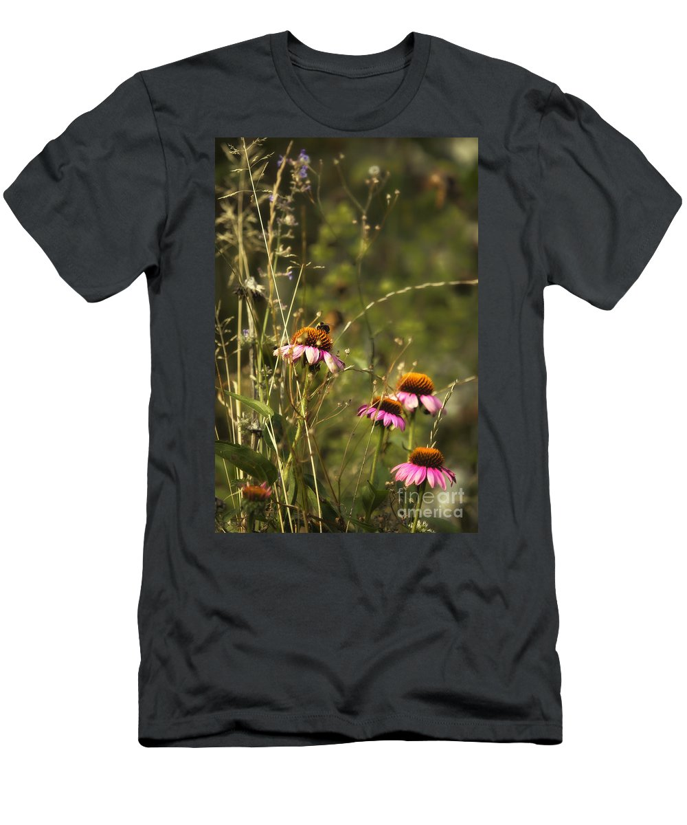 Flower Men's T-Shirt (Athletic Fit) featuring the photograph Coneflowers Weeds And Bee by Belinda Greb