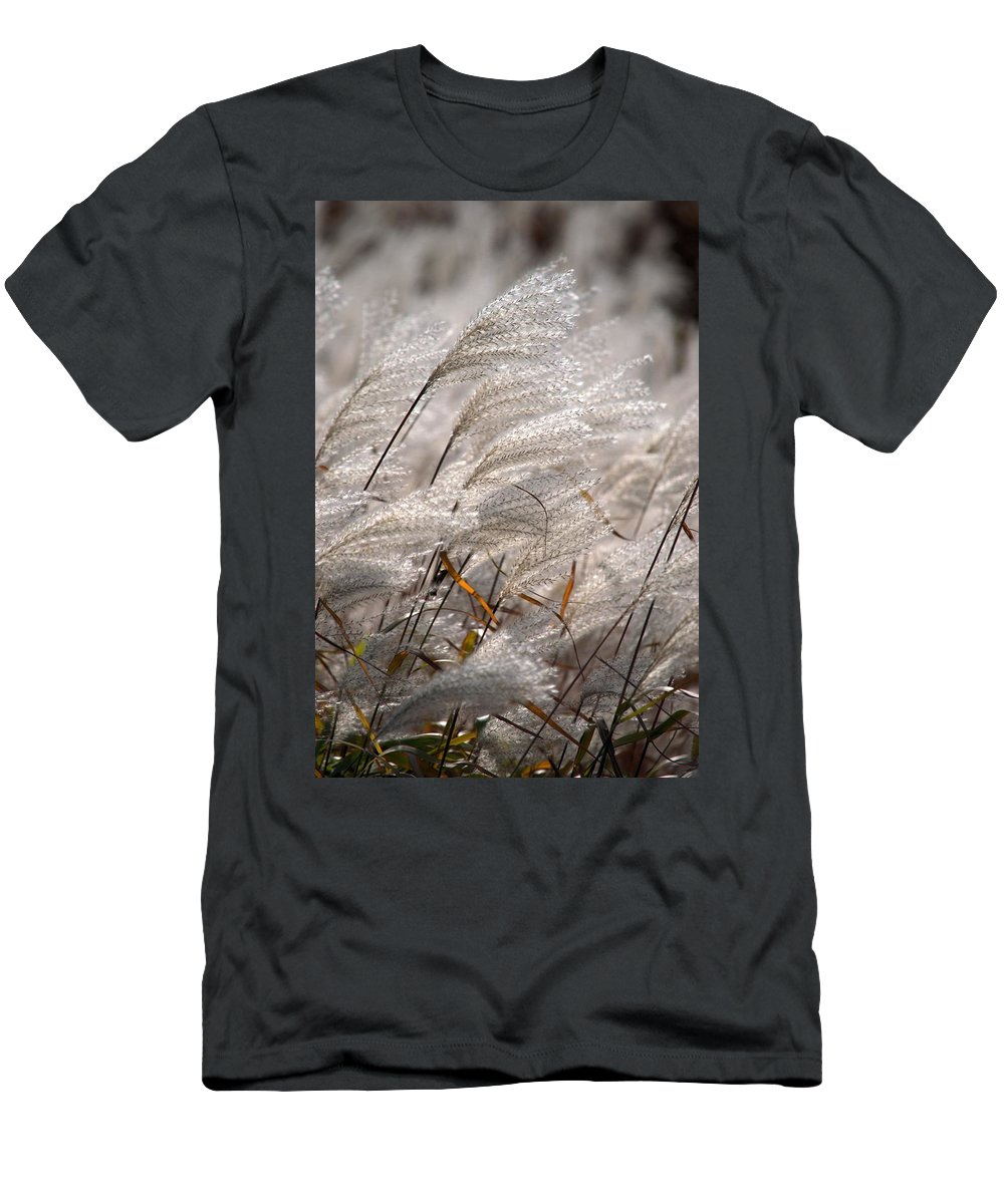 Beige Men's T-Shirt (Athletic Fit) featuring the photograph Cortaderia Selloana by Bonfire Photography