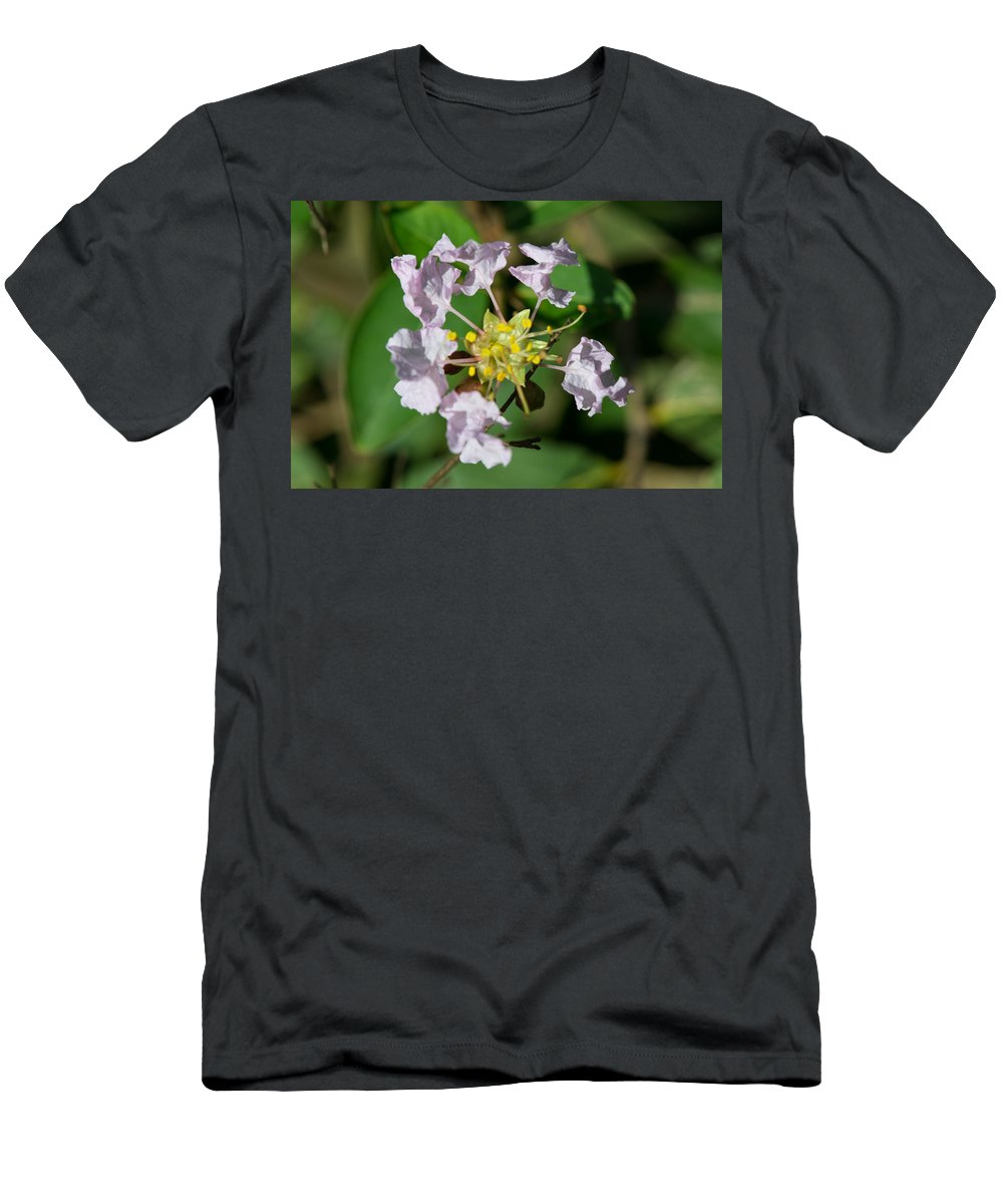 Crepe Myrtle Men's T-Shirt (Athletic Fit) featuring the photograph Crepe Myrtle Blossom Ring by JG Thompson