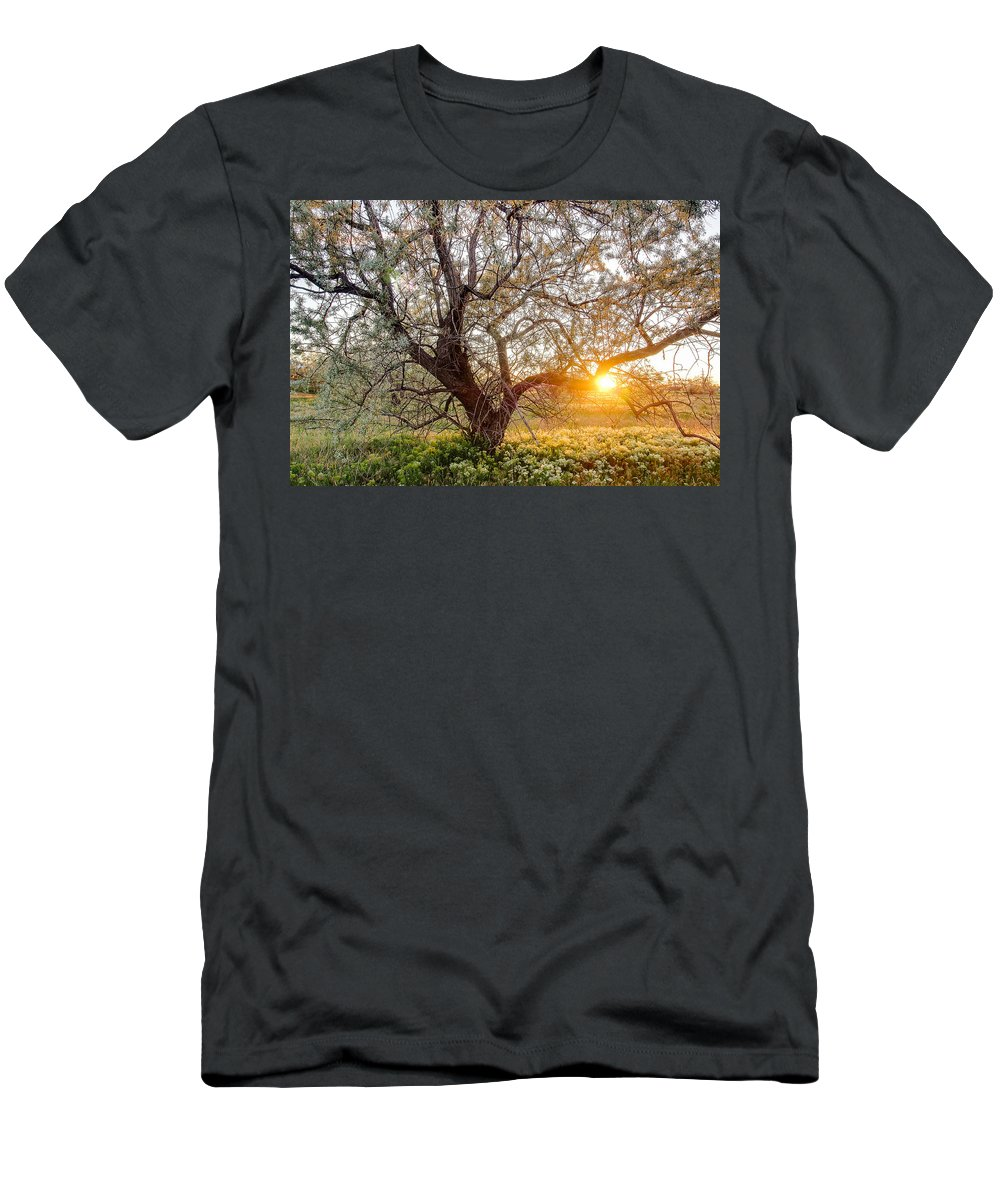 Spring Men's T-Shirt (Athletic Fit) featuring the photograph Crooked by Emily Dickey