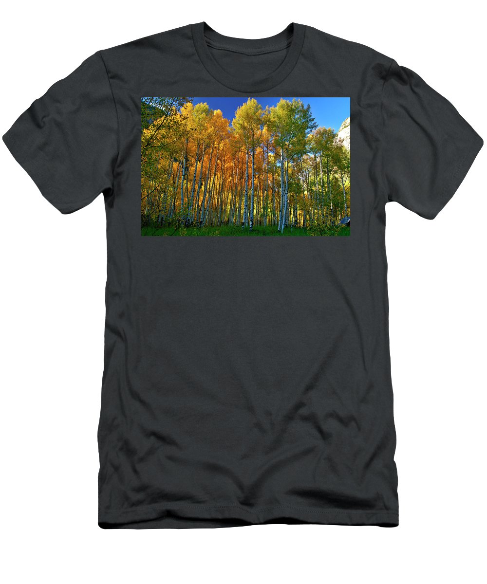 Fall Colors Men's T-Shirt (Athletic Fit) featuring the photograph Crystal Grove by Jeremy Rhoades
